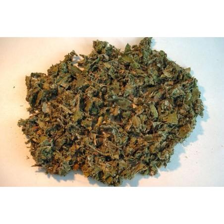 Bardane: feuilles