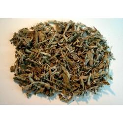 Sauge: feuilles